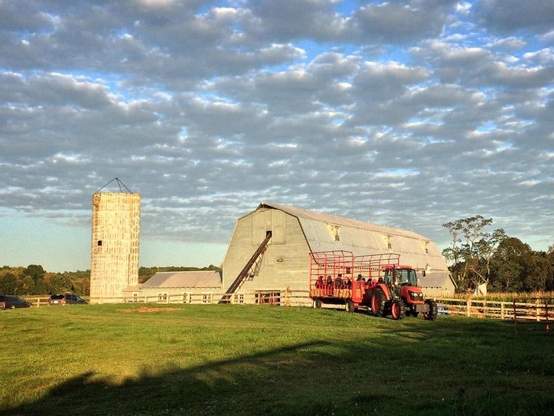 farm-1